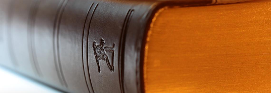 İdare Hukuku Çalışma Alanları Nelerdir