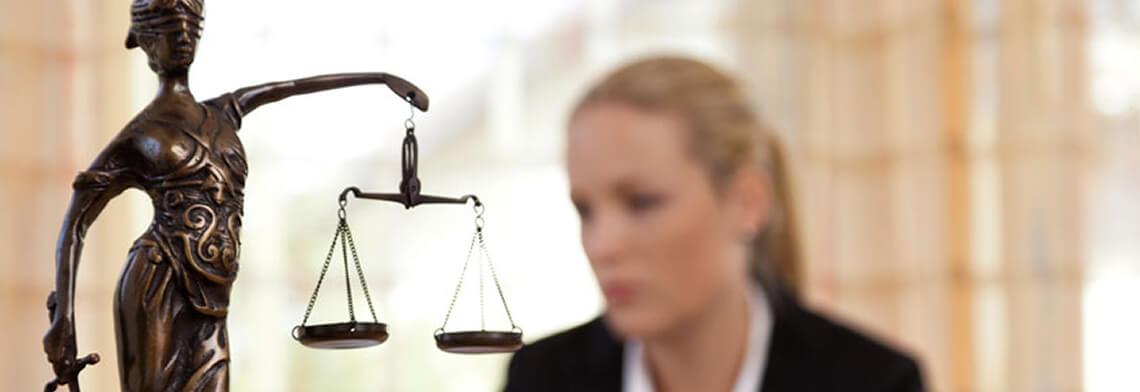 Kamu Hukuku Dalları Nelerdir